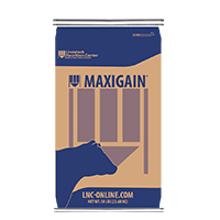 MaxiGain